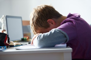Cause and effect of bullying essay
